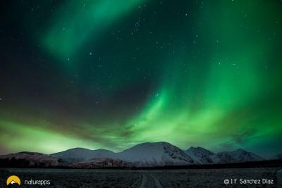 En busca de las auroras boreales