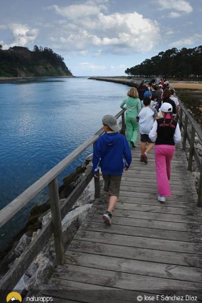 Taller de iniciación al senderismo en la Ría de Villaviciosa