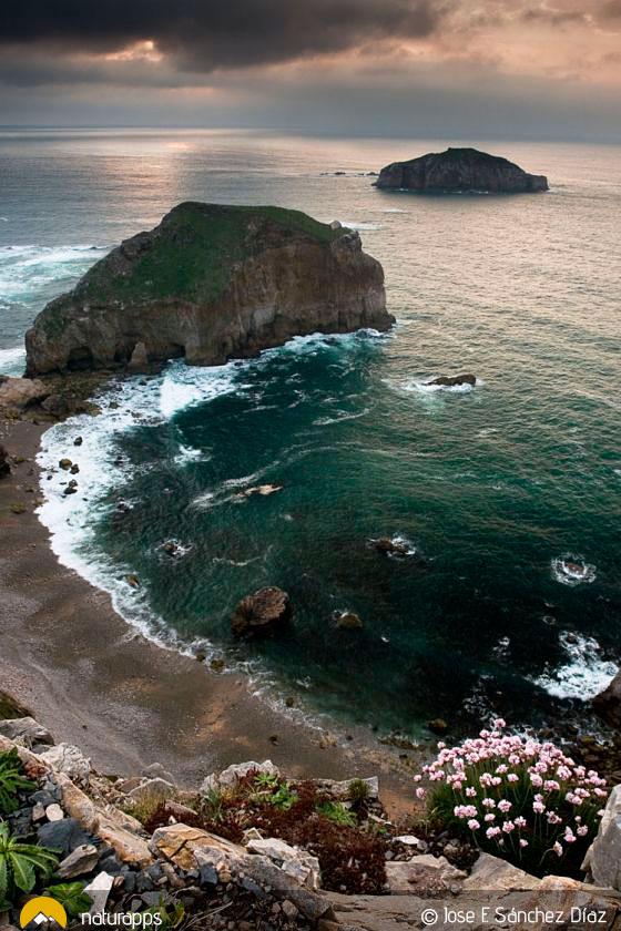 Isla de La ERbosa