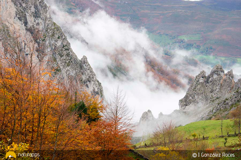 Foces de El Pino, un espectacular desfiladero en la montaña Allerana