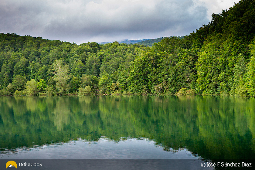 La Selva de Irati (© J.F. Sánchez Díaz)
