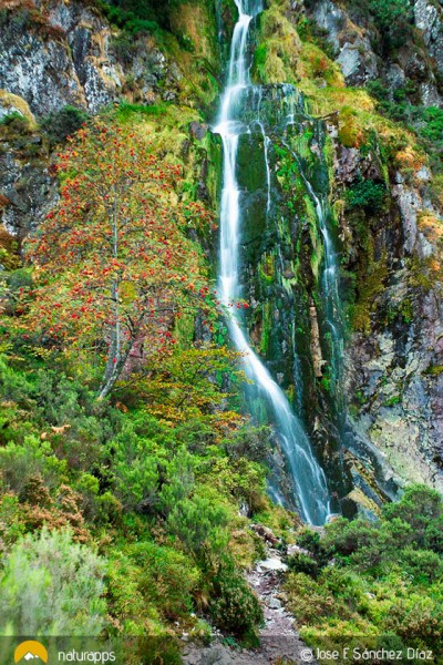Tabayón de Mongayo, una cascada en el Parque Natural de Redes